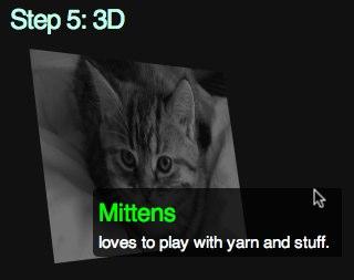 step 5: 3D